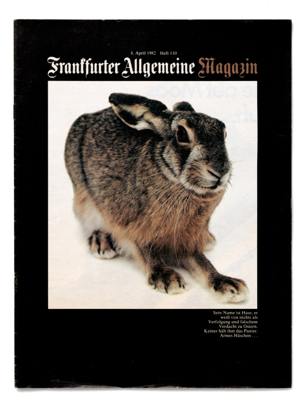 FAZ Magazin