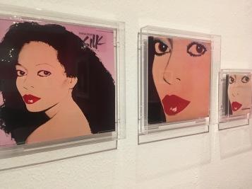 Portrait in kontrastreichen Farben: Silk Elektrik von Diana Ross (1982)